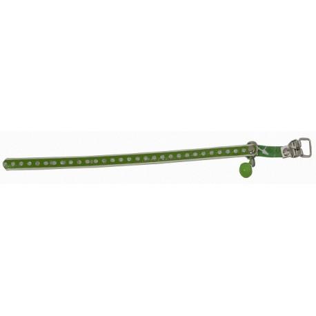 Collar Verde Gato 516.32