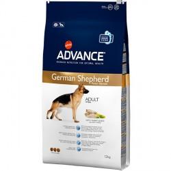 German Shepherd 12 Kg