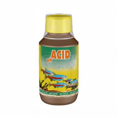 Dajana PH Acid